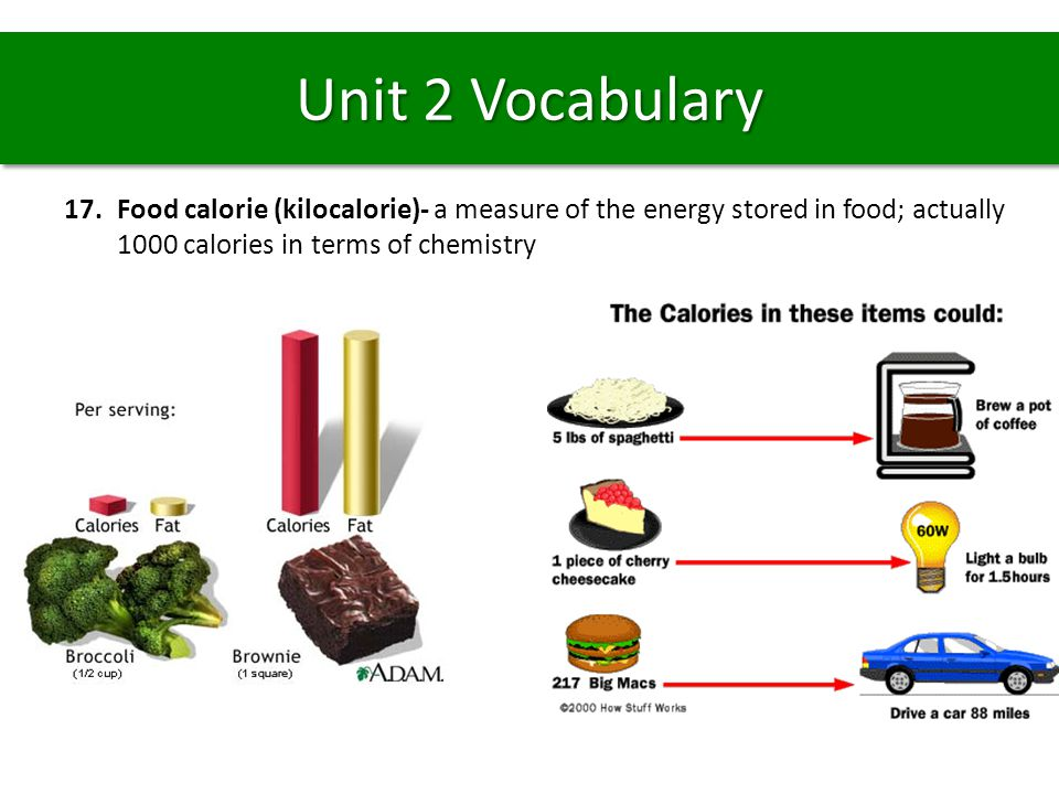 Unit 2 Vocabulary Food calorie (kilocalorie)- a measure of the energy stored in food; actually 1000 calories in terms of chemistry.