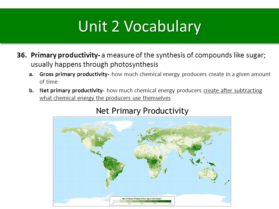 Unit 2 Vocabulary Primary productivity- a measure of the synthesis of compounds like sugar; usually happens through photosynthesis.
