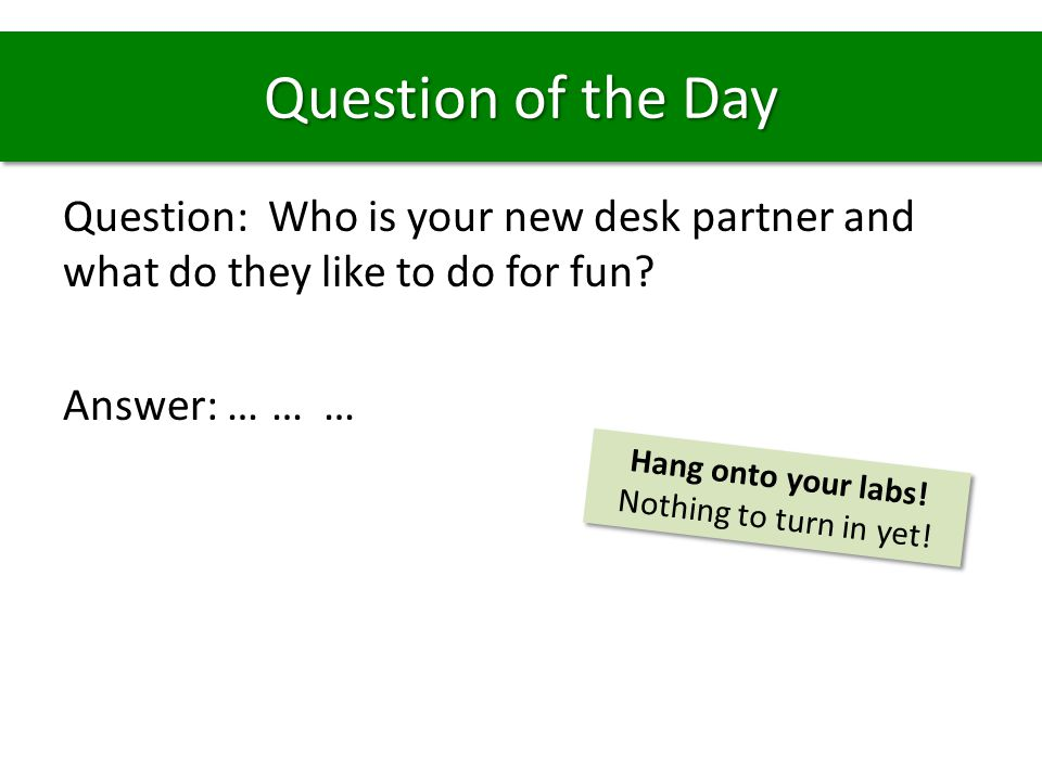 Question of the Day Question: Who is your new desk partner and what do they like to do for fun Answer: … … …