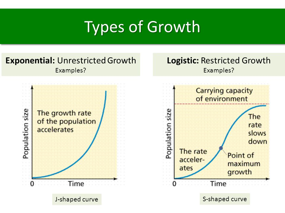 Types of Growth Exponential: Unrestricted Growth