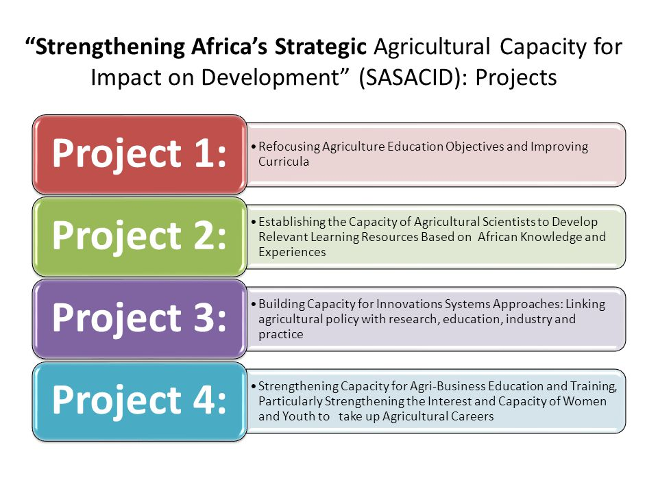 Strengthening Africa's Strategic Agricultural Capacity for Impact on Development (SASACID): Projects