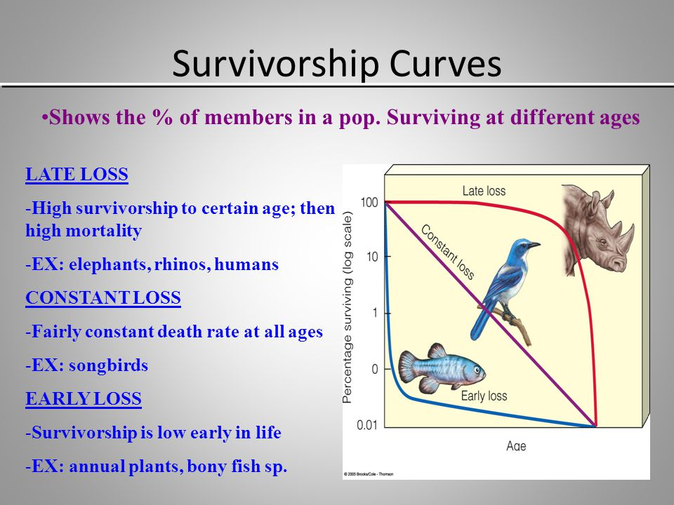 Survivorship Curves Shows the % of members in a pop. Surviving at different ages. LATE LOSS. High survivorship to certain age; then high mortality.