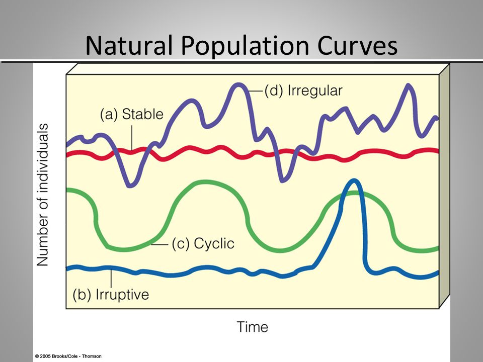 Natural Population Curves