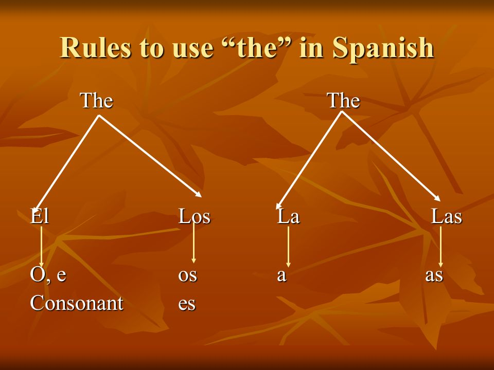 Rules to use the in Spanish