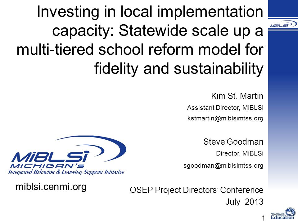 Investing in local implementation capacity: Statewide scale up a multi-tiered school reform model for fidelity and sustainability