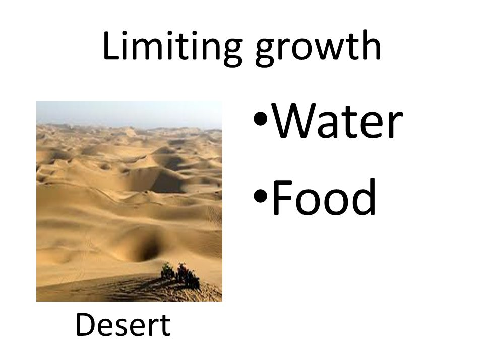 Limiting growth Water Food Desert