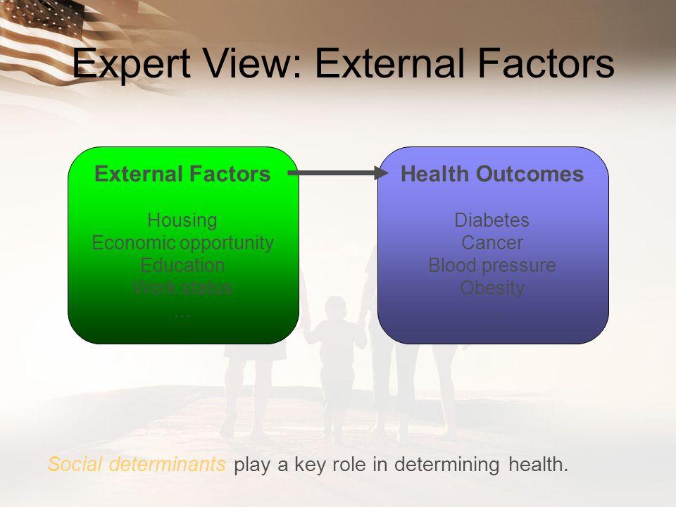 Expert View: External Factors