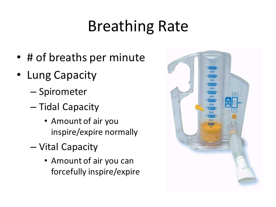 Breathing Rate # of breaths per minute Lung Capacity Spirometer