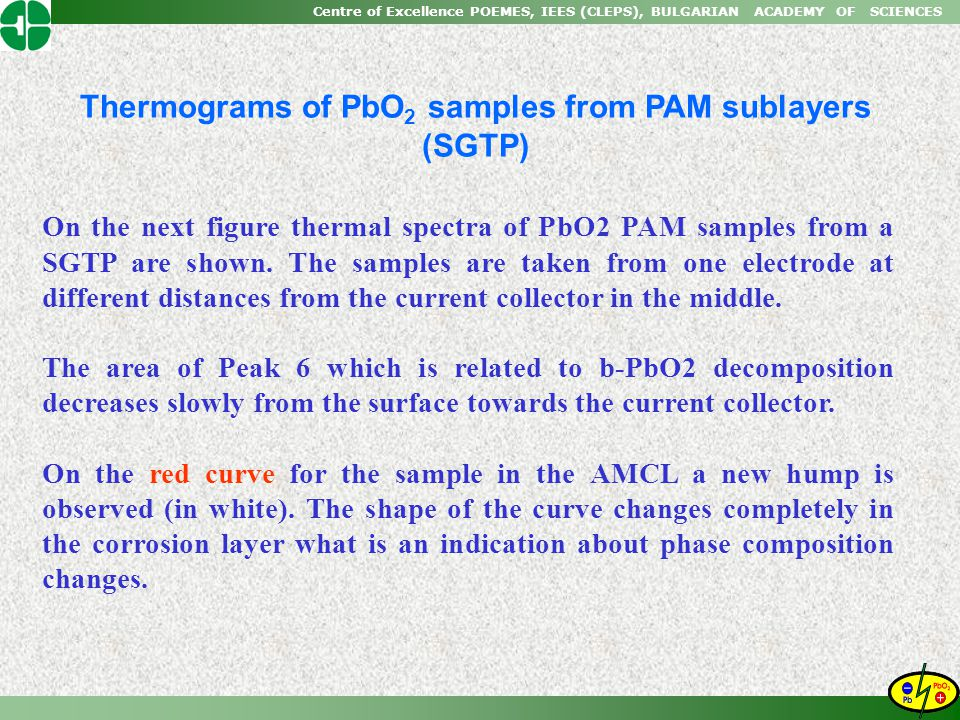 Thermograms of PbO2 samples from PAM sublayers (SGTP)
