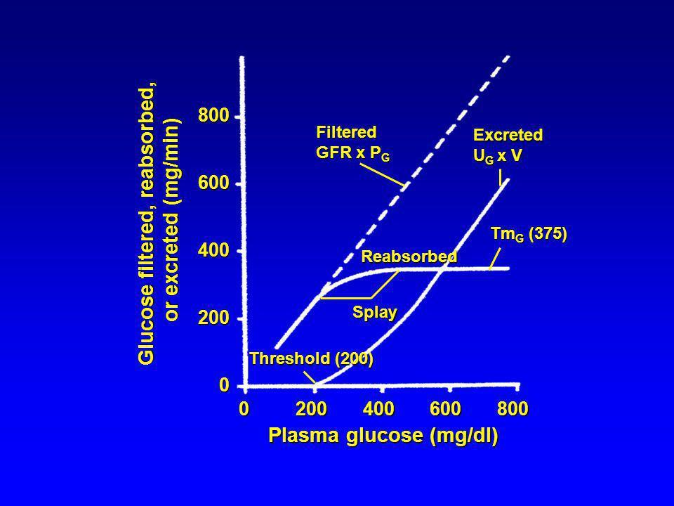 Glucose filtered, reabsorbed,