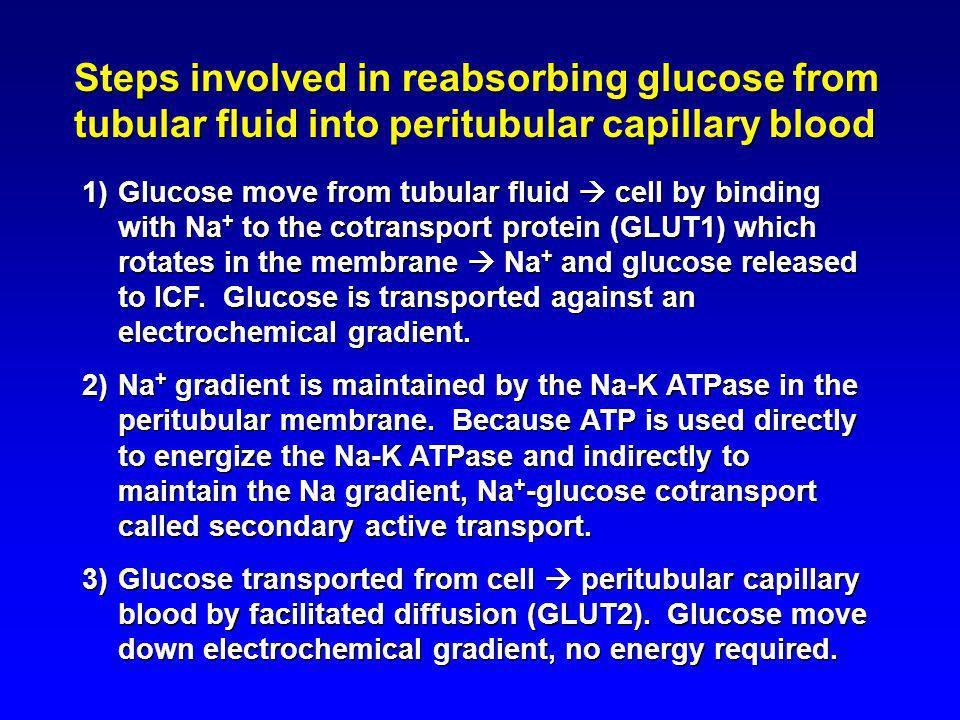 Steps involved in reabsorbing glucose from tubular fluid into peritubular capillary blood