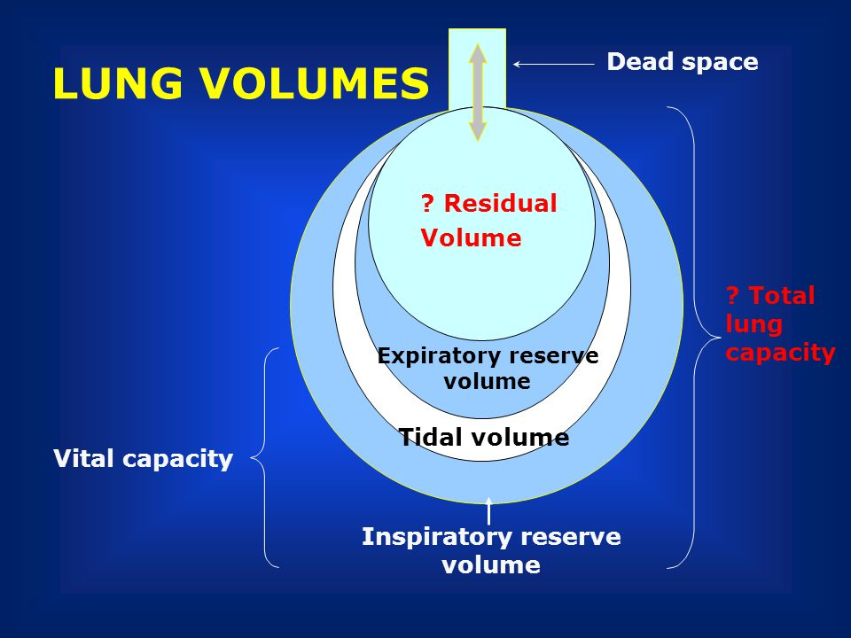 LUNG VOLUMES Dead space Residual Tidal volume Volume Total lung
