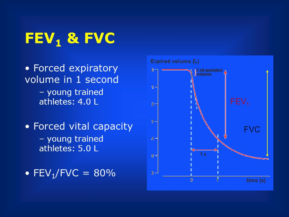 FEV1 & FVC Forced expiratory volume in 1 second Forced vital capacity