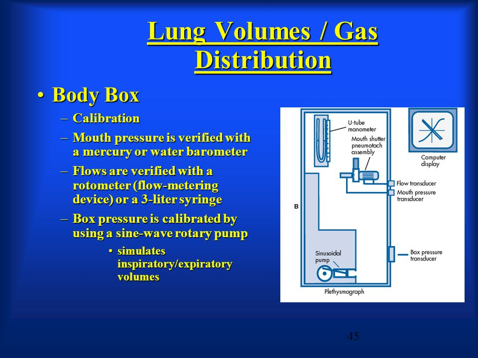 Lung Volumes / Gas Distribution