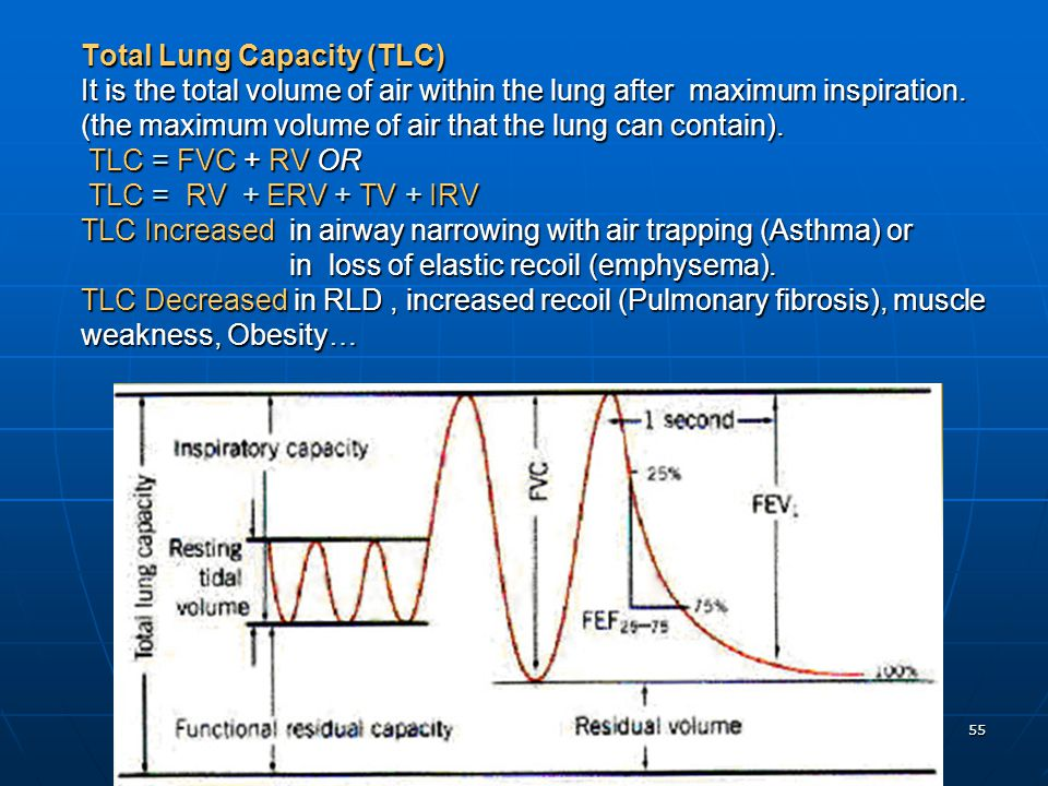 Total Lung Capacity (TLC) It is the total volume of air within the lung after maximum inspiration.