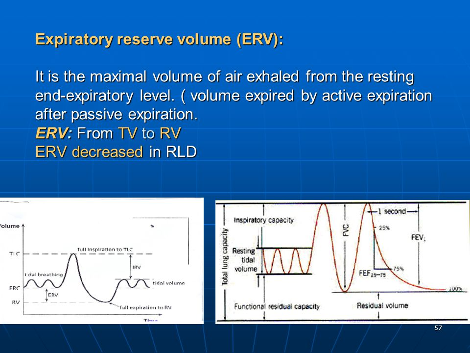 Expiratory reserve volume (ERV): It is the maximal volume of air exhaled from the resting end-expiratory level.