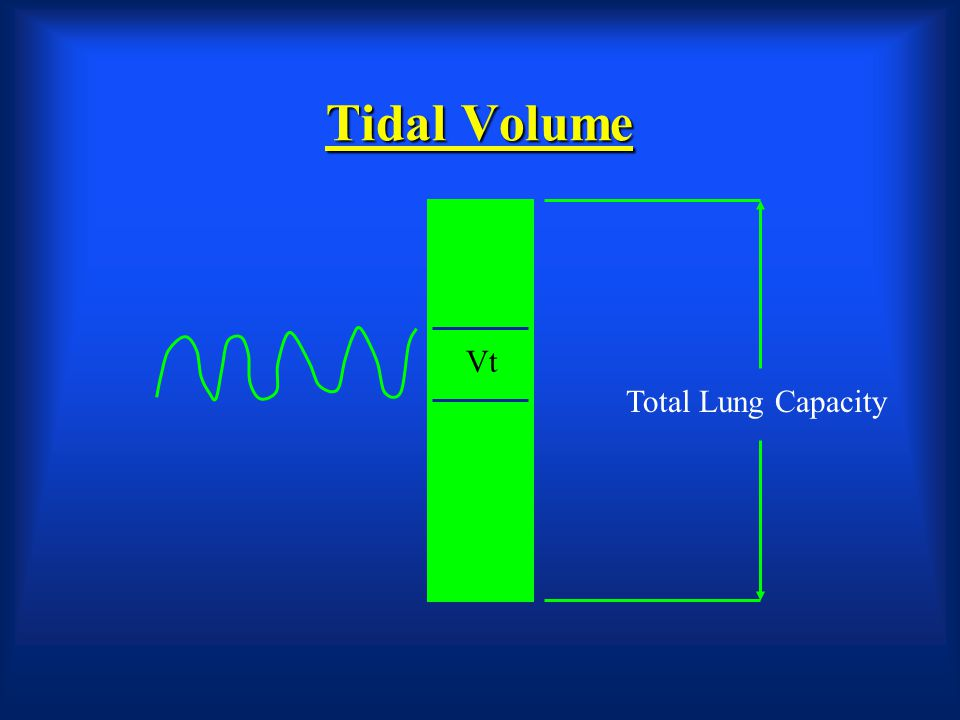 Tidal Volume Vt Total Lung Capacity