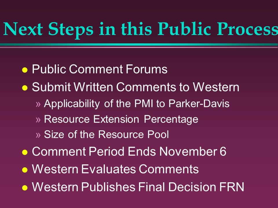 Next Steps in this Public Process