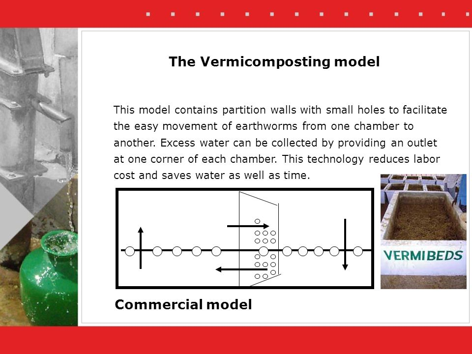 The Vermicomposting model