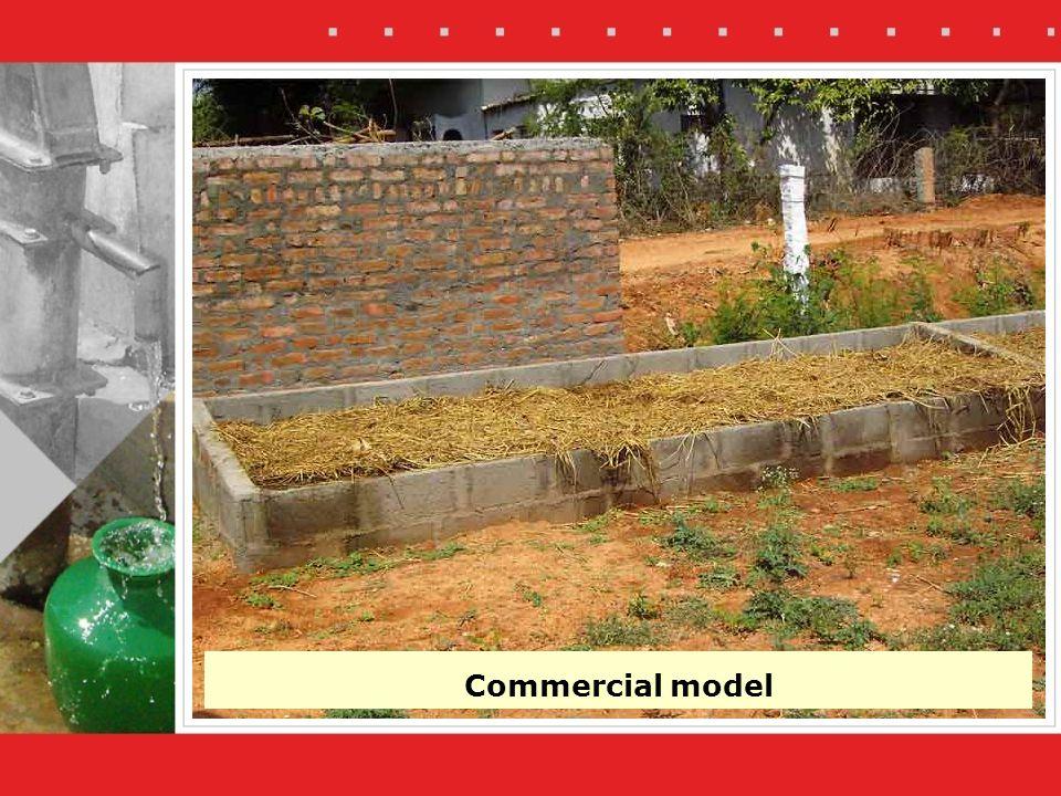 Commercial model