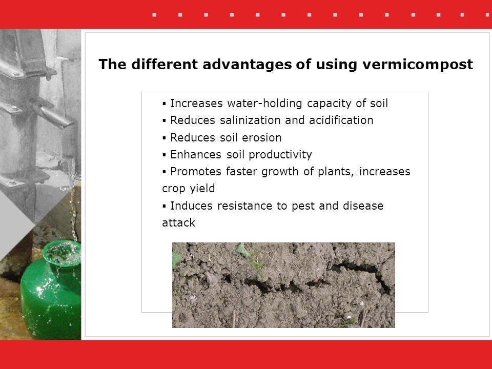 The different advantages of using vermicompost