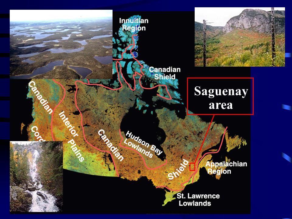 Saguenay area