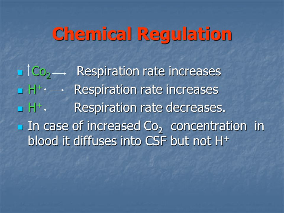 Chemical Regulation Co2 Respiration rate increases