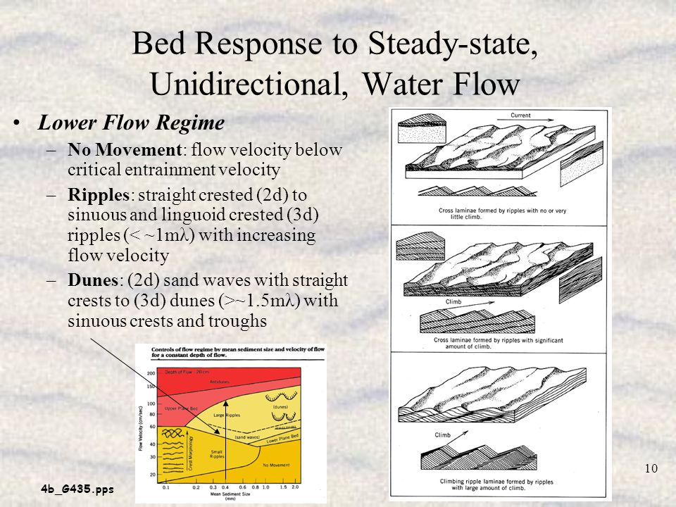 Bed Response to Steady-state, Unidirectional, Water Flow