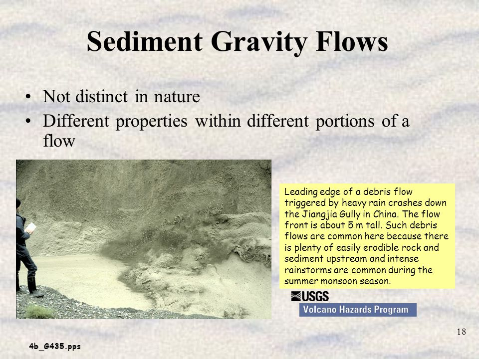 Sediment Gravity Flows