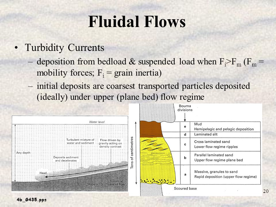 Fluidal Flows Turbidity Currents