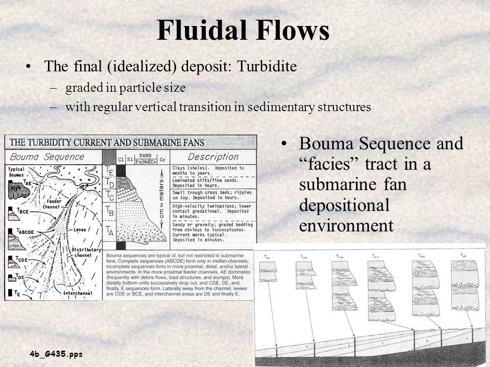Fluidal Flows The final (idealized) deposit: Turbidite. graded in particle size. with regular vertical transition in sedimentary structures.