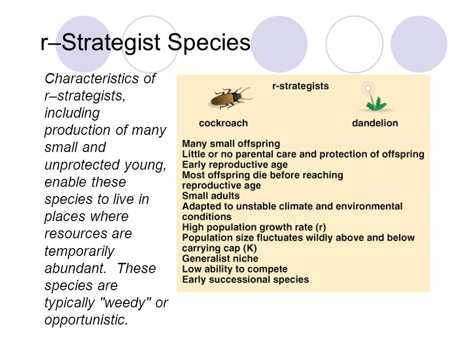 r–Strategist Species Fig. 10–7a
