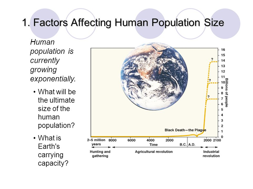 1. Factors Affecting Human Population Size