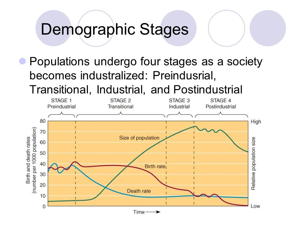 Demographic Stages Populations undergo four stages as a society becomes industralized: Preindusrial, Transitional, Industrial, and Postindustrial.