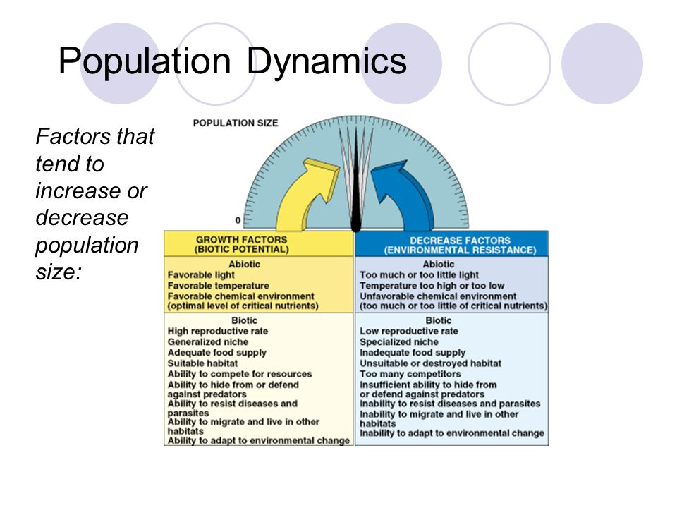 Population Dynamics Factors that tend to increase or decrease population size: Fig.