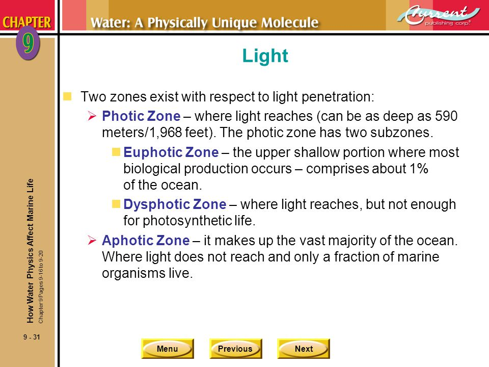 Light Two zones exist with respect to light penetration: