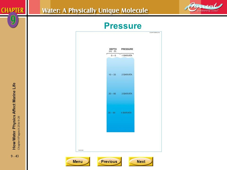 Pressure How Water Physics Affect Marine Life