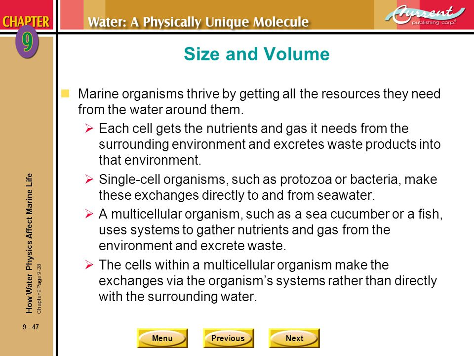 Size and Volume Marine organisms thrive by getting all the resources they need from the water around them.