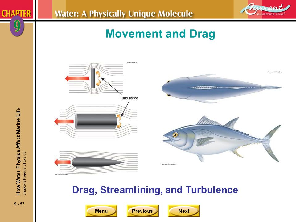 Movement and Drag Drag, Streamlining, and Turbulence