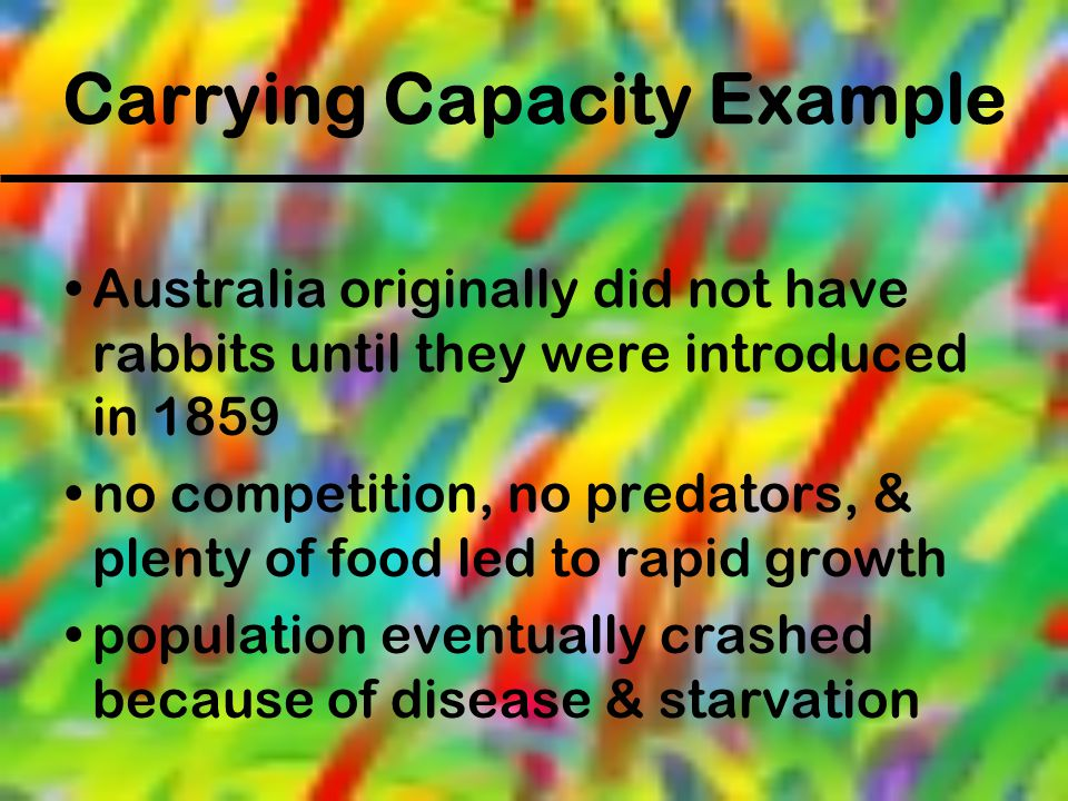 Carrying Capacity Example
