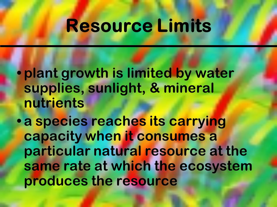 Resource Limits plant growth is limited by water supplies, sunlight, & mineral nutrients.