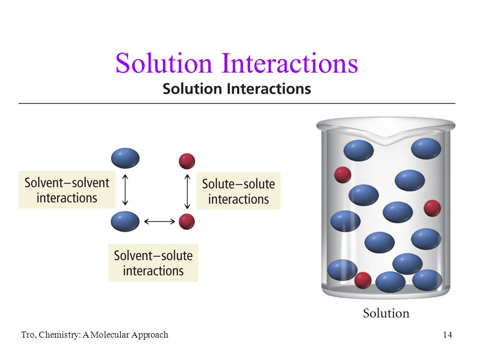 Solution Interactions