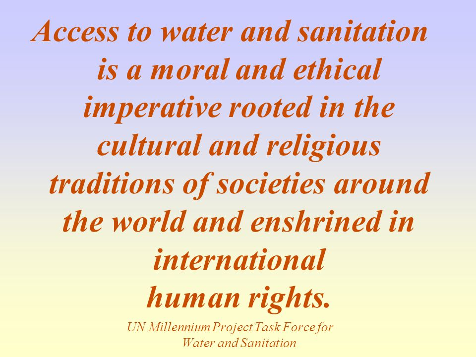 UN Millennium Project Task Force for Water and Sanitation