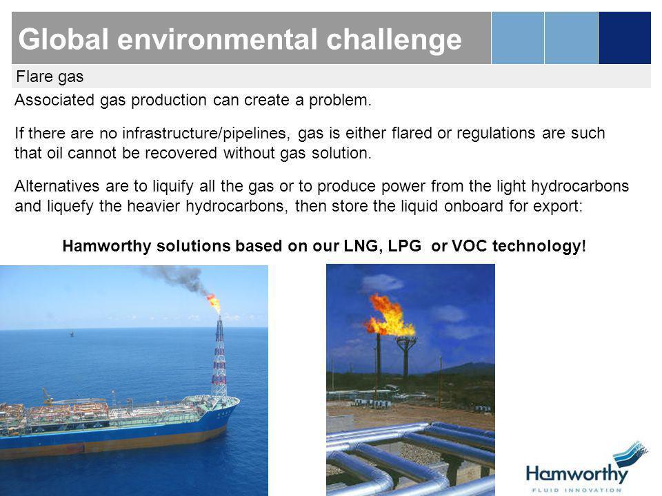Global environmental challenge
