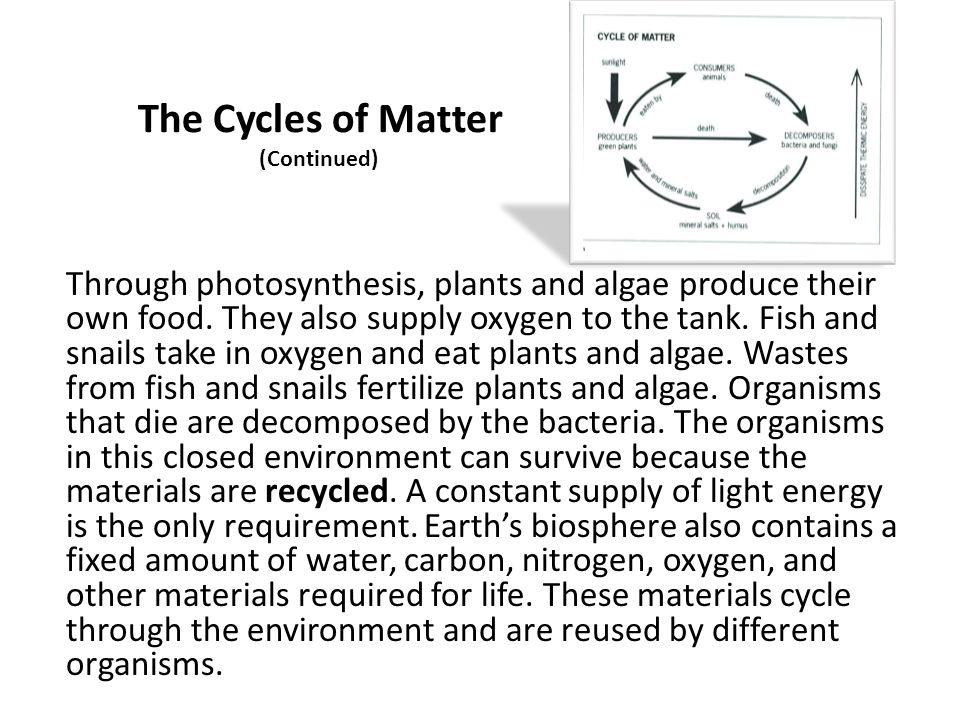 The Cycles of Matter (Continued)