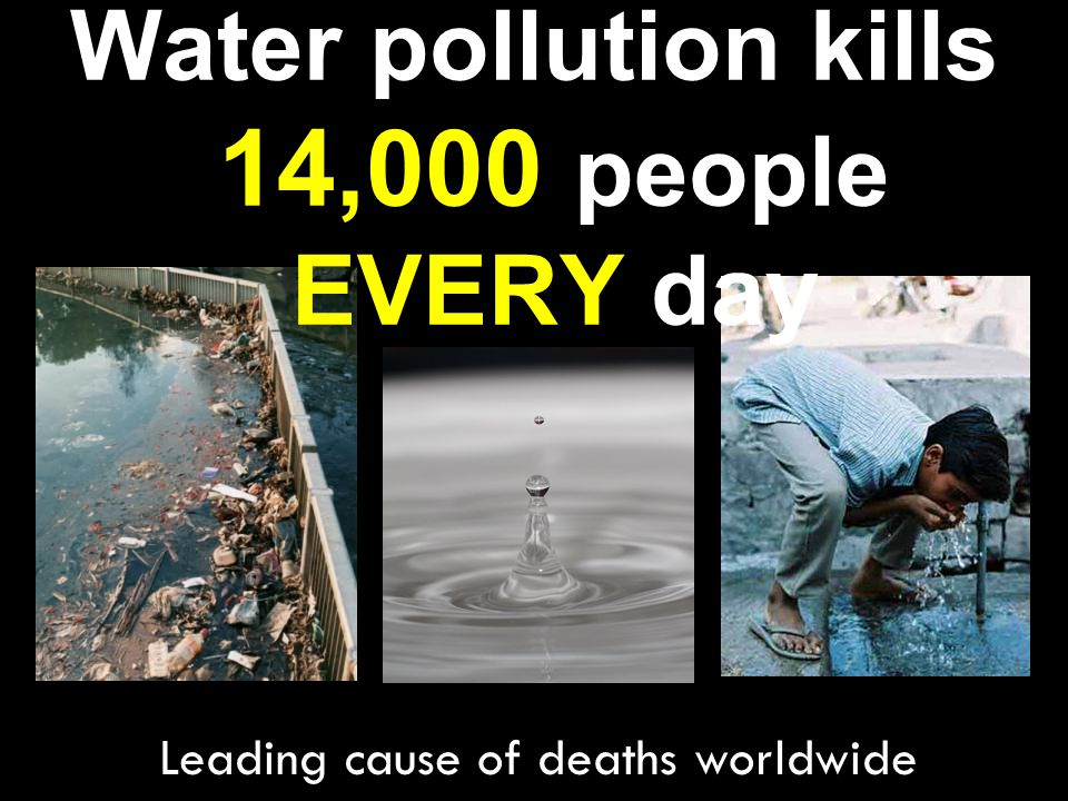 Water pollution kills 14,000 people EVERY day