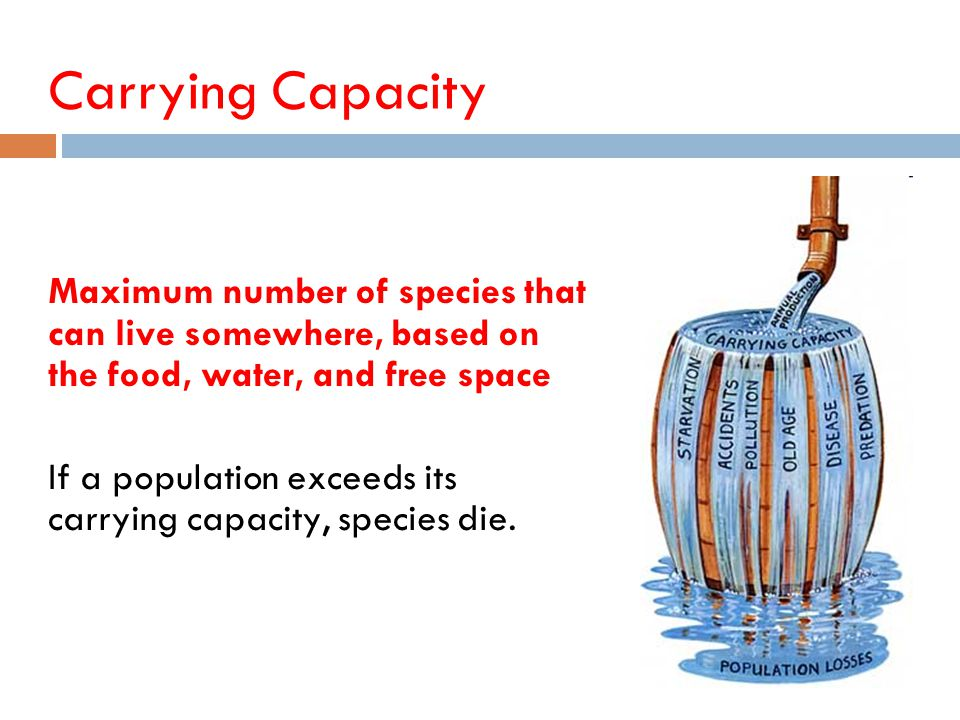 Carrying Capacity Maximum number of species that can live somewhere, based on the food, water, and free space.