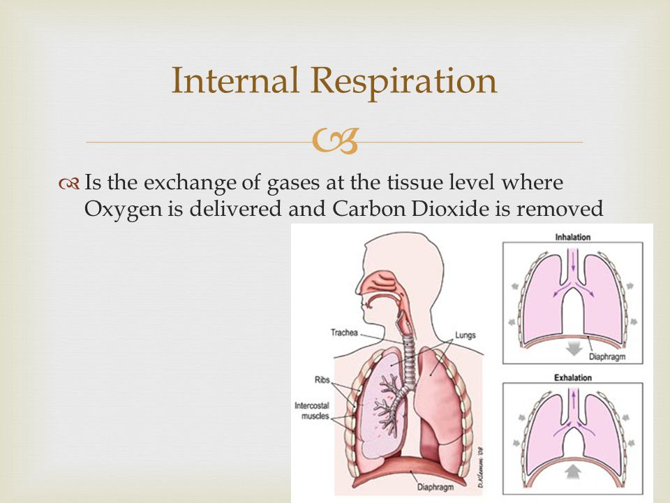 Internal Respiration Is the exchange of gases at the tissue level where Oxygen is delivered and Carbon Dioxide is removed.