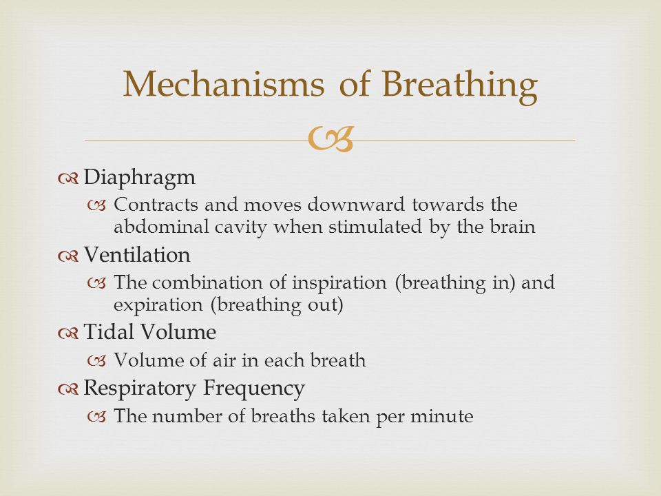 Mechanisms of Breathing