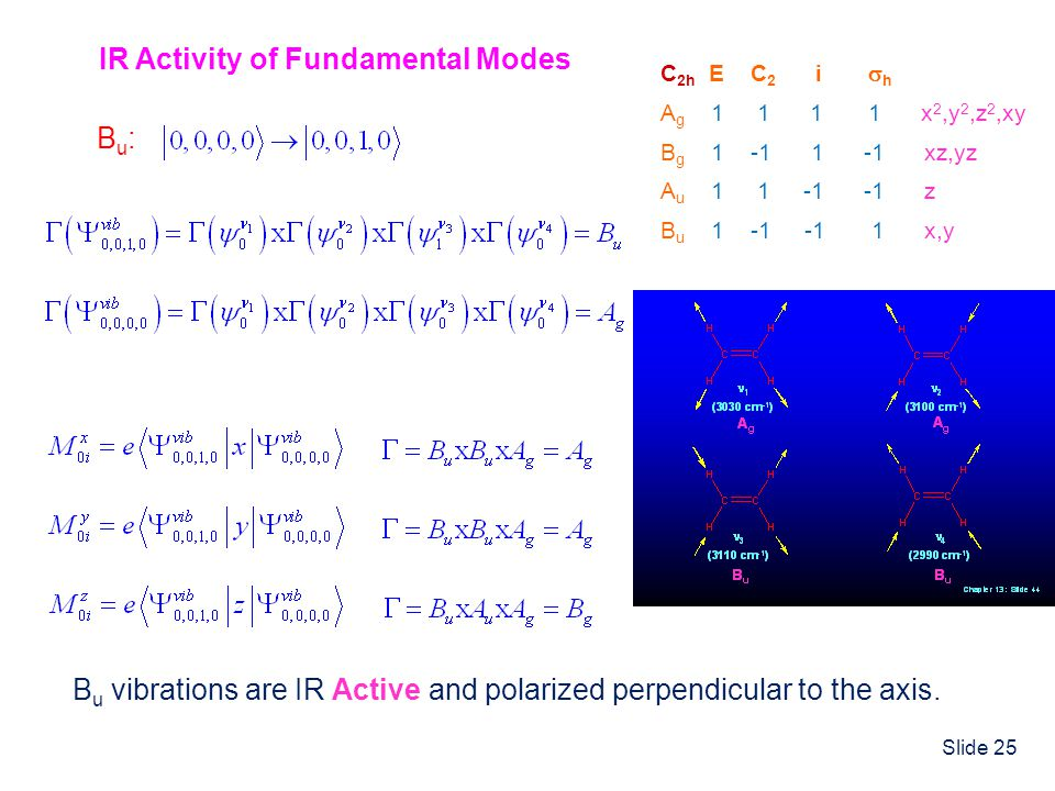 IR Activity of Fundamental Modes